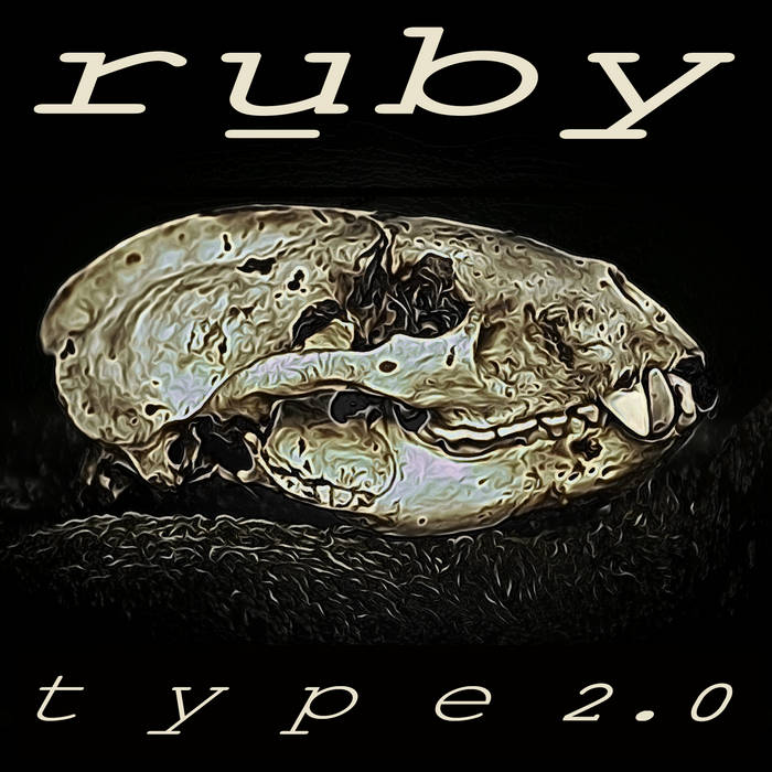 Type 2.0 cover art