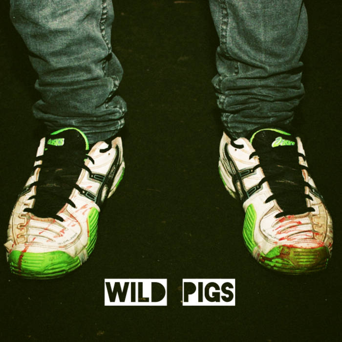 Enter the Wild Pigs cover art