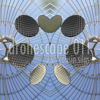 Dronescape 011 (waag_drs011) cover art