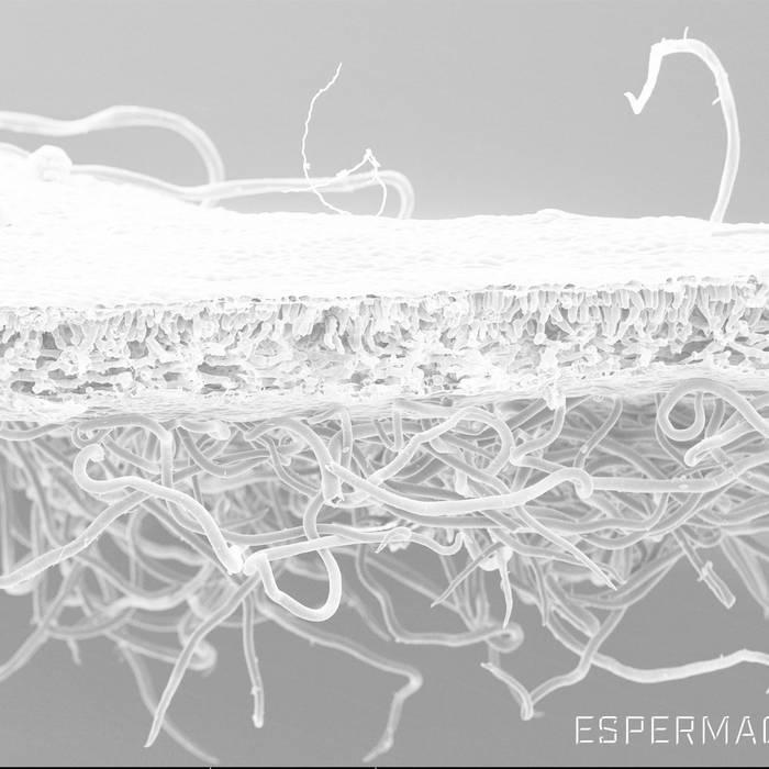 Espermachine - 3RD (2016)