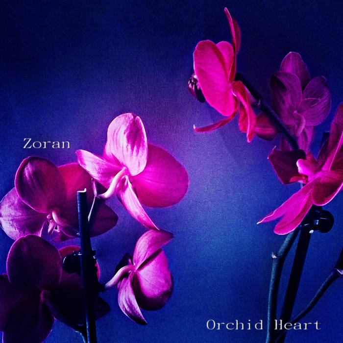 Orchid Heart cover art