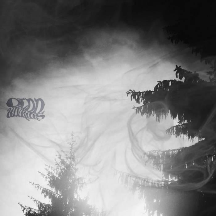 Mater Serpentium cover art