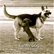 Funky Dog cover art