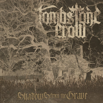 Shadows From The  Grave cover art