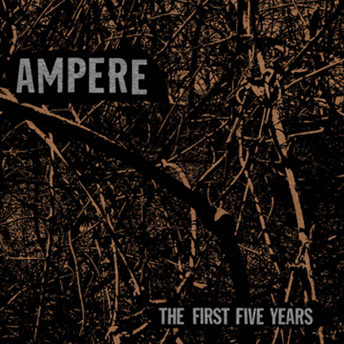 The First Five Years cover art