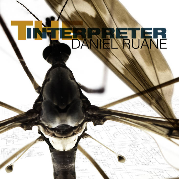 The Interpreter cover art
