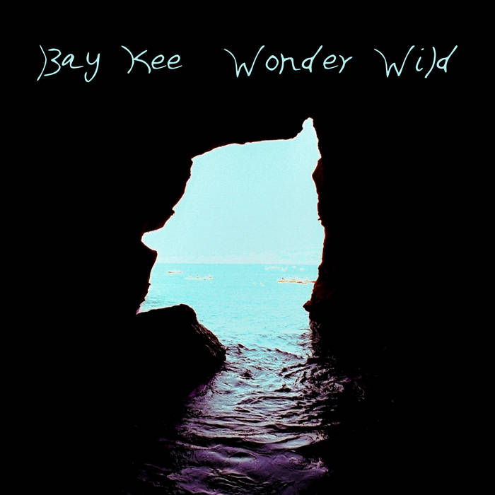 Wonder Wild cover art