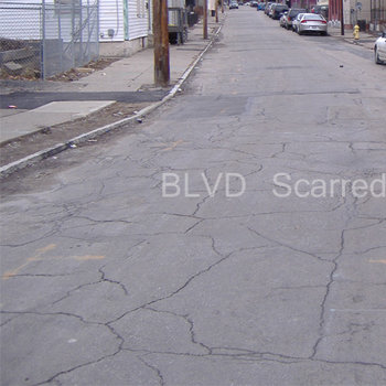 BLVD Scarred cover art