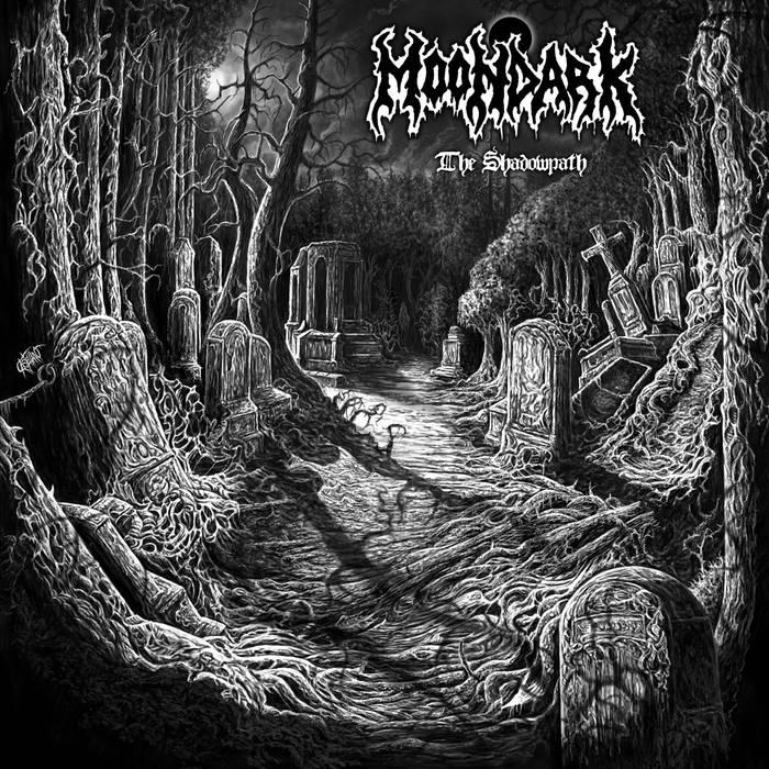 The Shadowpath cover art