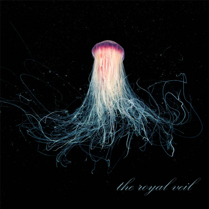 King of the Ocean cover art